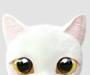 wallpaper, cat, and white image