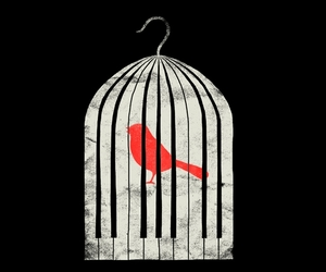 cage, liberation, and piano image