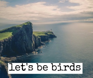 birds, cliff, and easel image