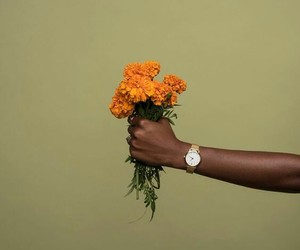 flowers, orange, and green image