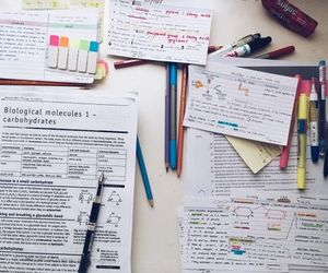 notes, book, and studyblr image