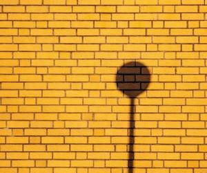 shadow, wall, and yellow image