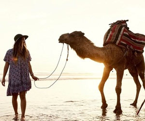camel and girl image