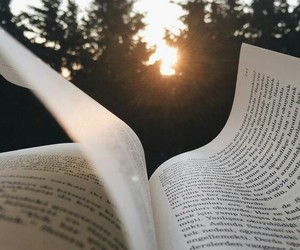book, sun, and reading image
