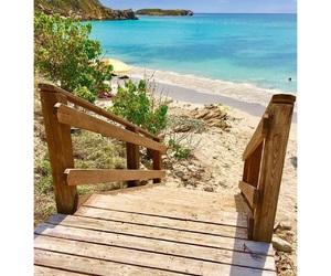 adventures, isla del encanto, and ⓟⓛⓐⓨⓐ image