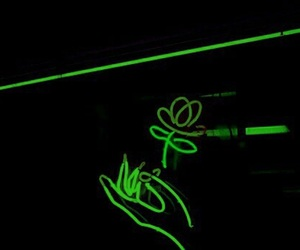 neon, light, and flowers image