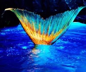 beautiful, libre, and mermaids image
