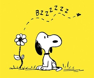 snoopy, flower, and yellow image