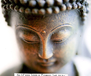 Buddha, buddhism, and meditation image