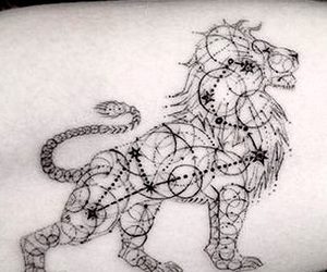 constellation, Leo, and lion image