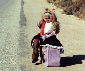 fashion and Miss Piggy image