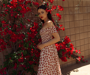 flowers, fashion, and red image
