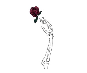 rose and skeleton image