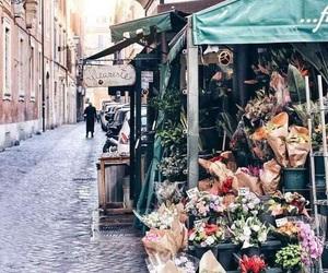 aesthetic, bucket, and flowers image