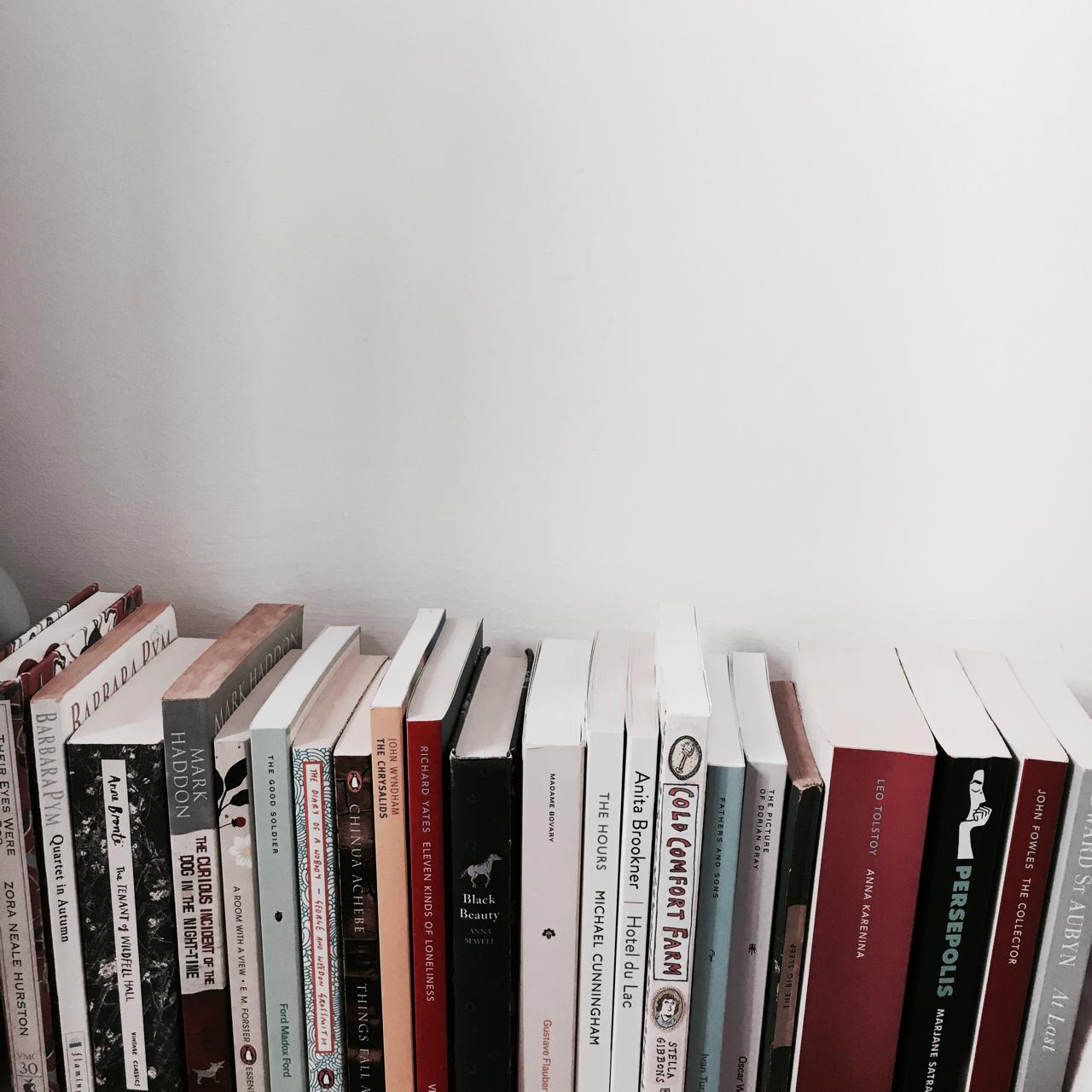 bibliophile, books, and bookstore image