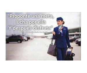 aviation, azul, and flight attendant image