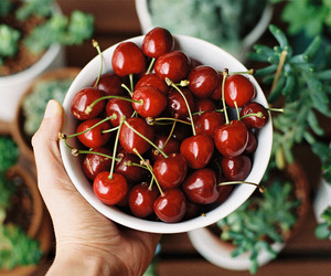 cherries, healthy, and cherry image