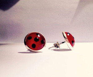earrings, ladybug, and miraculous image