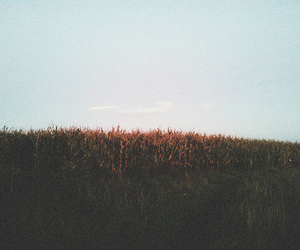 indie, nature, and hipster image
