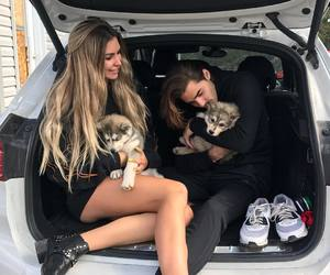 dog, couple, and cute image