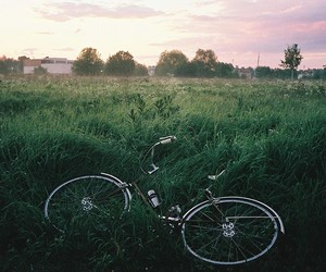 bike, green, and nature image