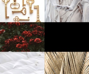 gold, piume, and roses image
