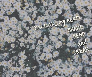 bend, break, and shake image