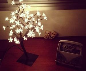 flowers, lights, and imaginarium image
