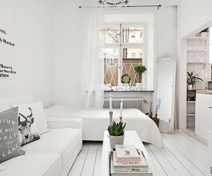 apartment, decor, and small image