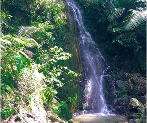adventures, puerto rico, and paradise image