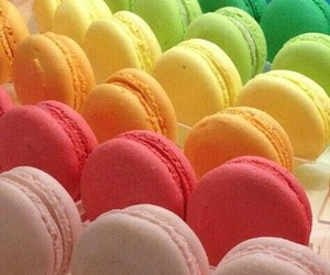 rainbow, colorful, and macaroons image