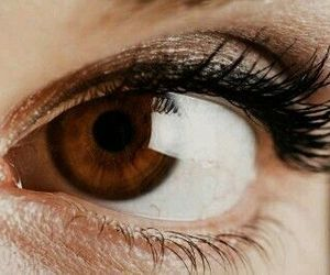 brown, eye, and eyes image