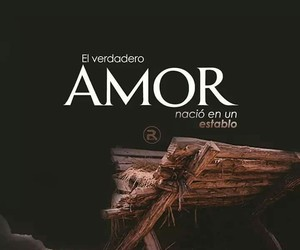 amor, frases, and mariell image