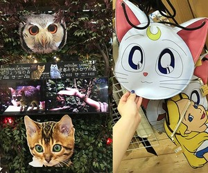 sailor moon bag, kyoto owl cafe, and bengal cat forest cafe image