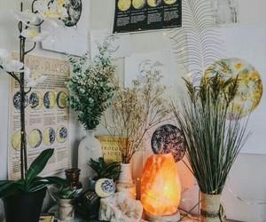 plants, aesthetic, and moon image