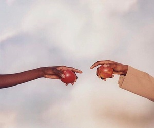 apple, beauty, and hands image