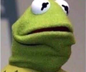 disgust, kermit, and reaction image