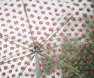 rain, green, and polka dots image