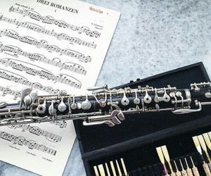 flute, music, and musique image