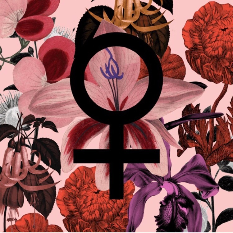 equal rights, female, and flowers image