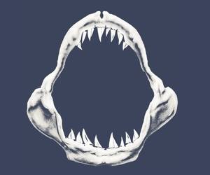 animals, jaws, and threadless image