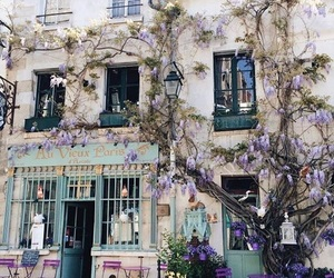 flowers, paris, and tumblr image