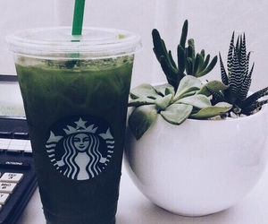 green, plants, and starbucks image