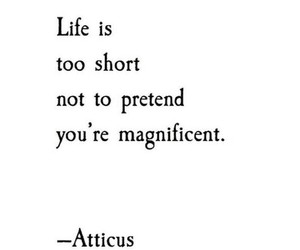 atticus, awesome, and poem image