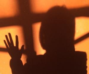 orange, shadow, and sunset image