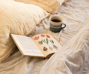 book, cozy, and vintage image
