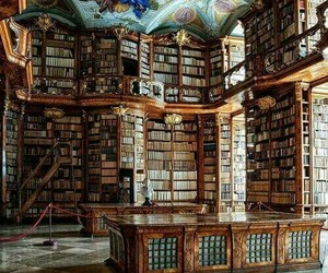 book, library, and biblioteca image