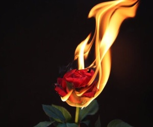 black, fire, and red image