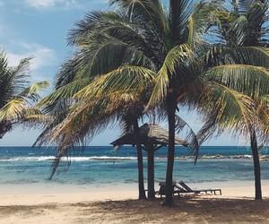 beach, paradise, and salt image