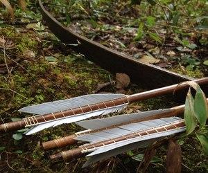 arrow, archery, and bow image